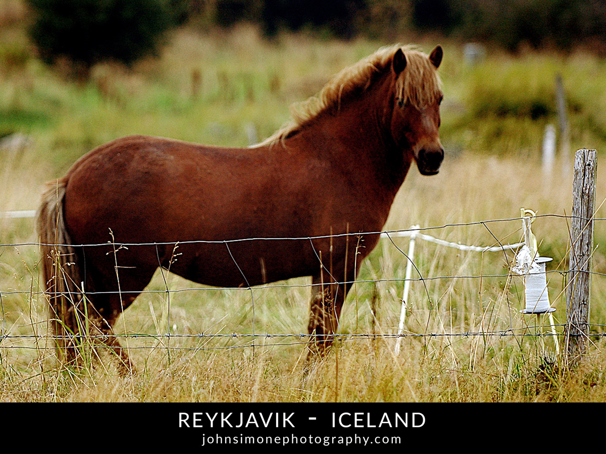 A photo-essay by John Simone Photography on Reykjavik, Iceland